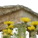 Temple dorique de Ségeste en Sicile, Vème siècle avant J.-C.